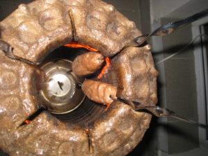 Размещаем люля кебаб в электро тандыре