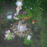 петунии в кашпо